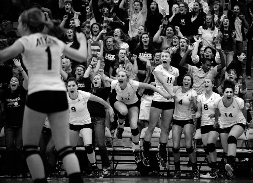 Aiken volleyball players and their fans behind them erupt in celebration after Aiken defeated Rock Hill for the State Championship Saturday evening November 6, 2010 at White Knoll High School.